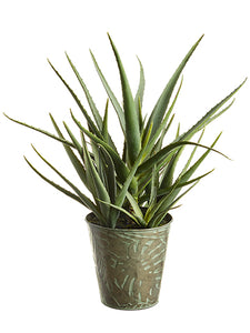 "24"" Soft Agave in Tin Pot  Green (pack of 1)"