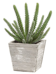 "9.5"" Soft PVC Cactus in Wood Planter Green (pack of 6)"