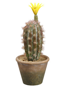 "11.75"" Flowering Barrel Cactus in Paper Mache Pot Green Yellow (pack of 12)"