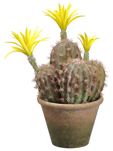 "14.5"" Flowering Column Cactus in Paper Mache Pot Green Yellow (pack of 4)"