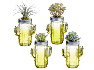 "7.5""H-8""H Succulent on Cactus Glass Jar Assortment (4 ea/set) Two Tone Green (pack of 4)"
