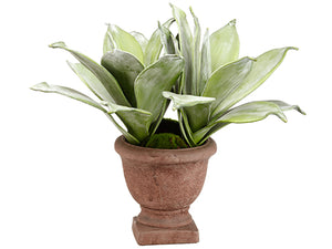 "18"" Agave in Cement Urn  Green (pack of 2)"