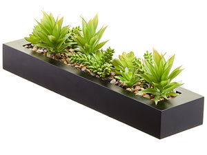 "7""Hx5""Wx20.5""L Succulent Garden in Plastic Planter Two Tone Green (pack of 4)"
