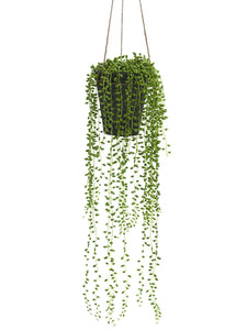 "29"" Hanging String of Pearls in Clay Pot Green (pack of 4)"
