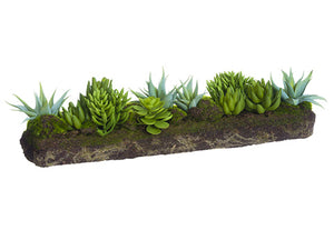 "7.5""Hx20""L Succulent Garden With Soil And Moss Green (pack of 2)"