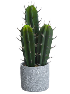 "13.5"" Soft Cactus In Paper Mache Pot Green (pack of 2)"