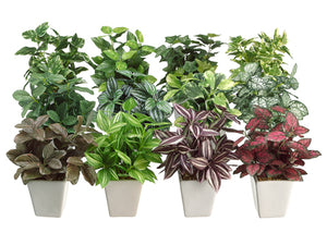"7.5"" Greenery Arrangement in Ceramic Pot Assortment (12 styles) Assorted (pack of 12)"