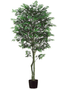 7' Aralia Tree w/Plastic Trunk & 3240 Leaves in Pot Green (pack of 1)