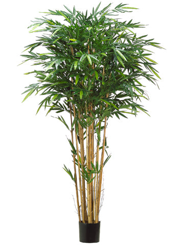 7' Tropical Bamboo Tree with 1984 Leaves in Pot Green (pack of 2)