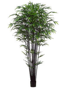 9' Tropical Black Bamboo Tree w/2752 Leaves in Pot Green (pack of 2)