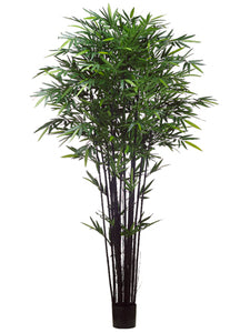 8' Tropical Black Bamboo Tree w/2240 Leaves in Pot Green (pack of 2)