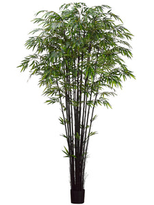 8' Natural Black Bamboo Tree x17 with 3040 Leaves in Pot Two Tone Green (pack of 2)
