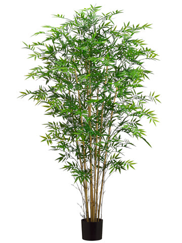 6' Bamboo Tree w/550 Leaves in Pot Green (pack of 2)