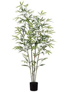 4' Bamboo Tree x4 in Pot With 540 Leaves Green (pack of 4)