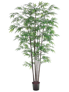 7' Black Bamboo Tree x8 with 1980 Leaves in Pot Green (pack of 2)