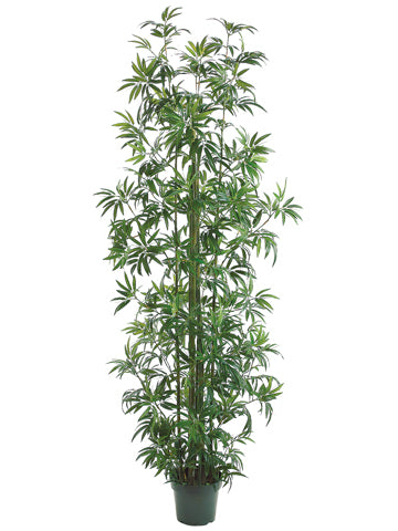 8' Bamboo Tree x11 w/1746 Leaves in Pot Green (pack of 2)