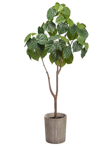 "47.2"" Catalpa Tree in Wood Planter Two Tone Green (pack of 2)"