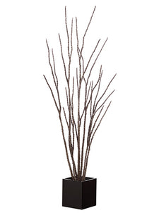6' Camel Whip Twig Tree in Pot Brown (pack of 2)