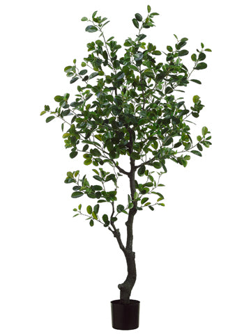 6' EVA Ficus Tree with 989 Leaves in Plastic Pot Green (pack of 2)