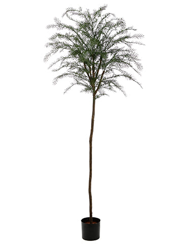 7.5' Plastic Taxus Thayerae Tree with 340 Leaves Green (pack of 2)