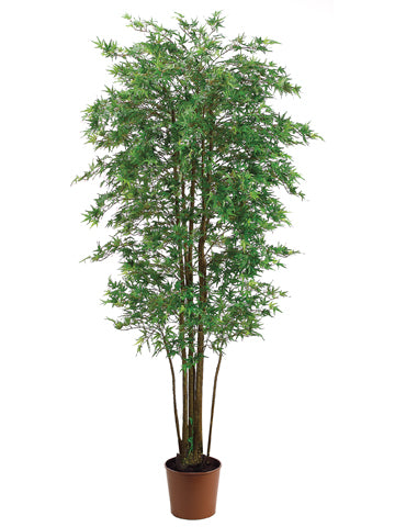 6' Mini Japanese Maple Tree with 2928 Leaves in Pot Green (pack of 2)