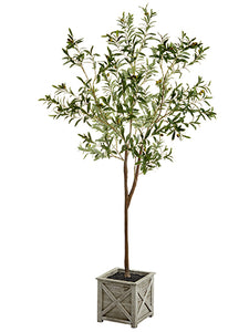 "70.8"" Olive Tree in Wood Planter Green (pack of 2)"