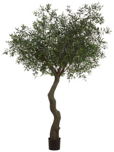 7' Olive Tree with 10064 Leaves and 180 Olives in Plastic Pot Green Black (pack of 1)