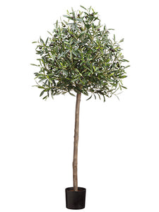 4' Olive Tree in Pot With 1560 Leaves And 42 Fruits Two Tone Green (pack of 2)