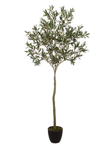 "64"" Olive Tree in Pot  Green (pack of 2)"
