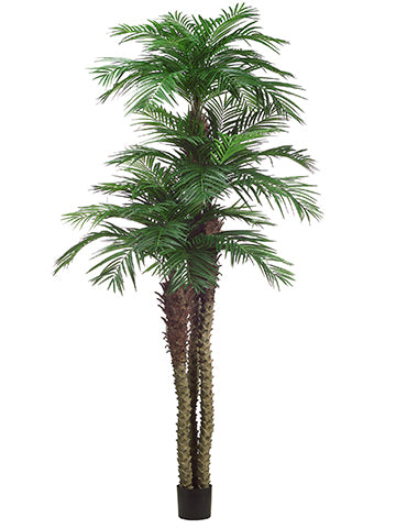 10'+8'+6' Tropical Area Palm Tree x3 w/1781 Leaves in Pot (Knock-Down Packing) Green (pack of 1)