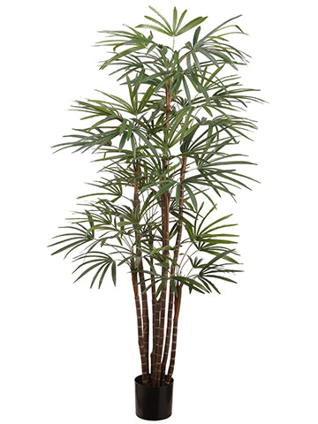 4' Palm Tree x7 in Pot Green (pack of 2)