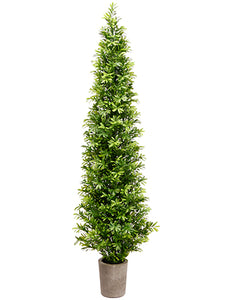 "35"" Podocarpus Topiary Tree in Cement Pot Green (pack of 1)"