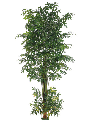 10' Fishtail Palm Tree w/1426 Leaves & Square Base Green (pack of 2)