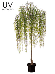 "74"" UV Protected Willow Tree in Plastic Pot Green (pack of 2)"