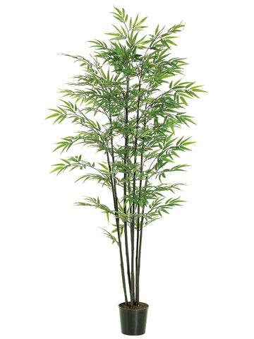 6' Black Bamboo Tree x7 With 1440 Leaves in Black Plastic Pot Green (pack of 1)