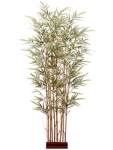 "5'Hx24""W Bamboo Wall Divider with 960 Leaves on Wood Stand Variegated (pack of 2)"