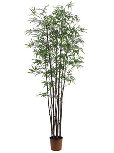 7' Black Bamboo Tree x9 With 1760 Leaves in Pot Two Tone Green (pack of 1)