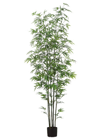 7' Mini Green Stem Bamboo Tree in Pot Two Tone Green (pack of 1)
