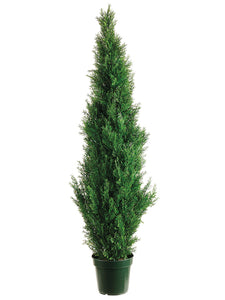 "60"" Cedar Topiary x1565 w/Pot (Knock-Down Packing) Green (pack of 1)"