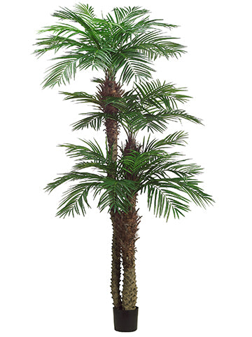 9'+7'+5' Tropical Area Palm Tree x3 With 1364 Leaves in Pot (knock-Down Packing) Green (pack of 1)