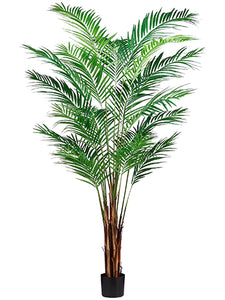 7' Areca Palm Tree x19 With 739 Leaves in Pot (knock-Down Packing) Green (pack of 1)