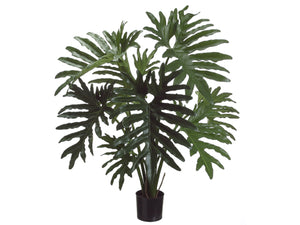 "31"" Selloum Philodendron Plant in Plastic Pot Green (pack of 1)"