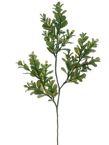 "16"" Boxwood Spray  Green (pack of 24)"