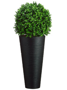 "44""Hx16""Wx16""L Boxwood Ball in Bamboo Container Green (pack of 1)"