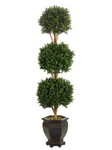 5' Triple Ball Boxwood Topiary in Pot Green (pack of 1)