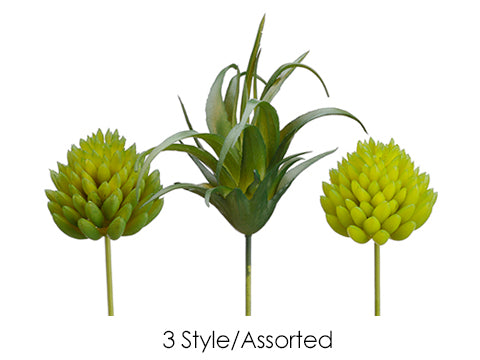 Mini Cactus Assorted (3 Style/Assorted) Assorted (pack of 12)