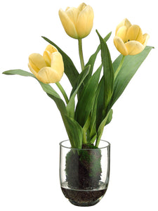 "14.9"" Tulip in Glass Vase in Re-Shippable Box Yellow (pack of 1)"