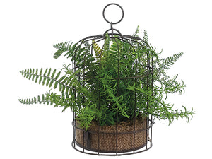 "12"" Mixed Fern Plant w/Burlap in Birdcage Two Tone Green (pack of 4)"