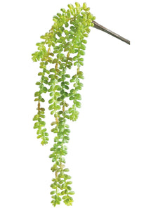 "19"" Donkey Tail Vine  Green (pack of 4)"