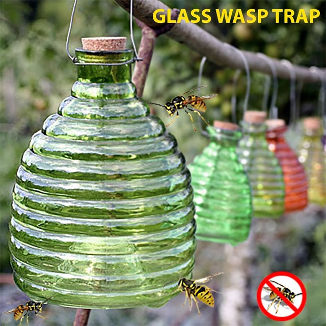 Emerald Green Glass Wasp Trap Simply Stunning - Aussie Supply Company